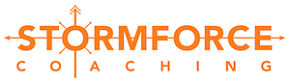 stormforce_orange_small_opt