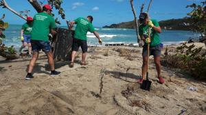 BVI Wombles beach clean